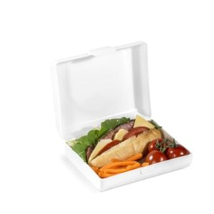 Mealmate lunchbox 1