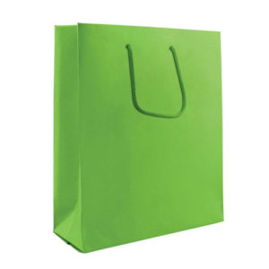 Colour Midi Carrier Bag Lime