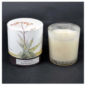 Lunac Aloe Sandalwood Candle