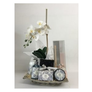 Orchid Gift Hamper - Grayhouse